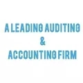 A leading Auditing and Accounting Firm